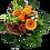 Blumenstrauß Einfach so mit orangefarbenen Rosen und Gerbera mit roten Akzenten