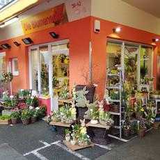 Galerie_Die Blumenecke Ostern.jpg