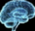 tratamento de epilepsia em curitiba