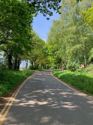 Worthing Road