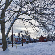 Swanton Morley Village Green