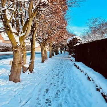 Greengate, Swanton Morley