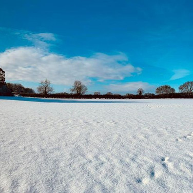 Swanton Morley in the Snow