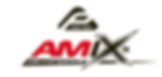Amix Logo.png
