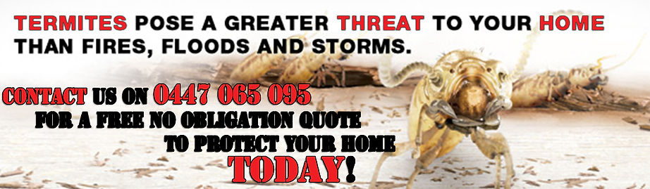 Termites threaten homes abc termite and pest control