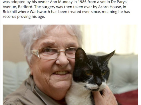 Is Waddie the UK's oldest cat?