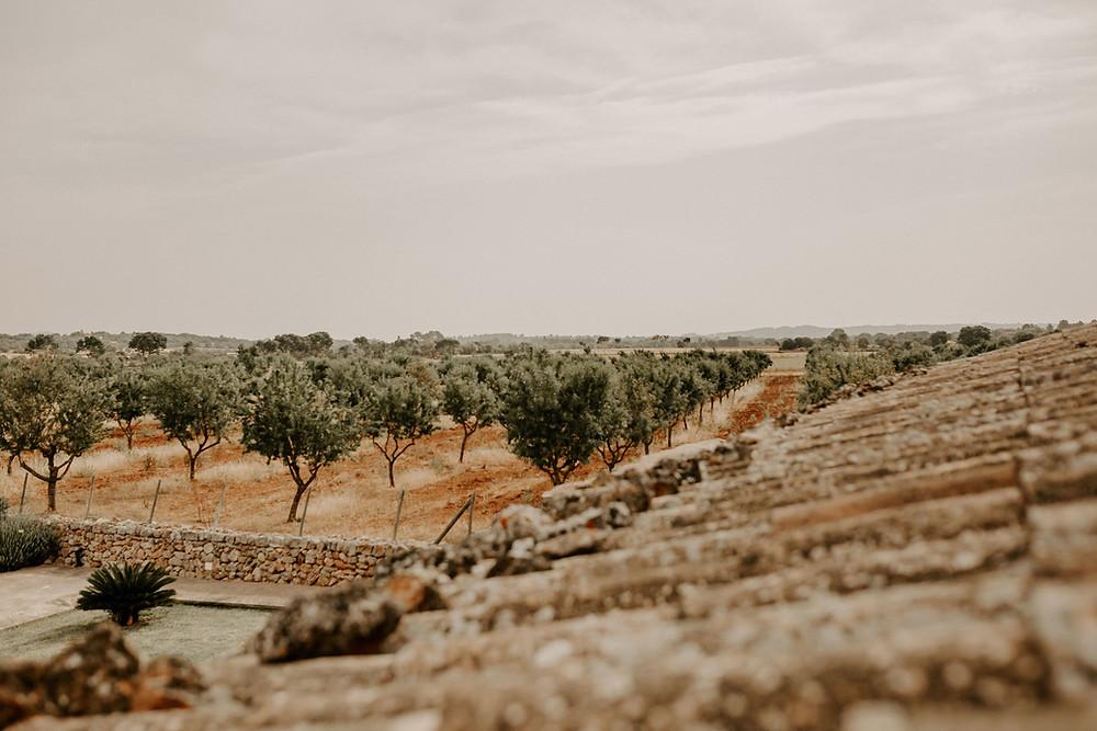 Finca Alaiar | Mallorca.Hochzeit