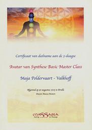 Avatar va Synthese Basic Master Class ko