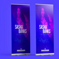 WWE Banners
