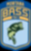 BassFEDMTRV2.png