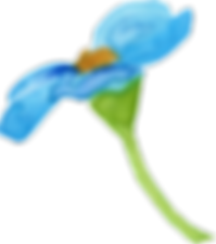 forgetmenot_aquareldesigns11.png