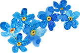 forgetmenot_aquareldesigns7.png