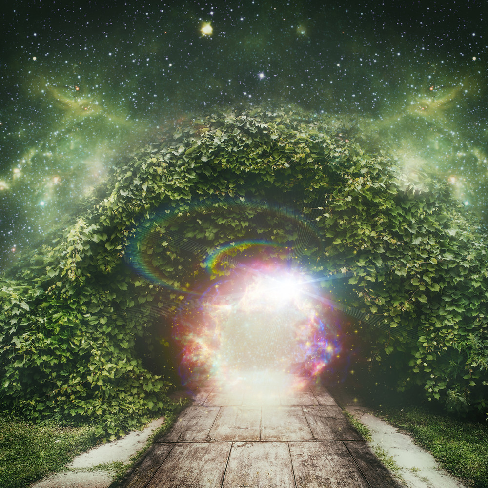 Portal to Heaven