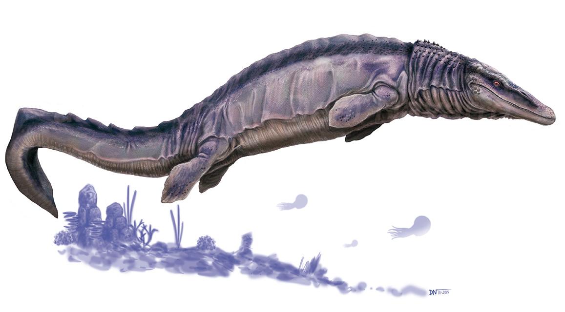 Boceto Mosasaurus