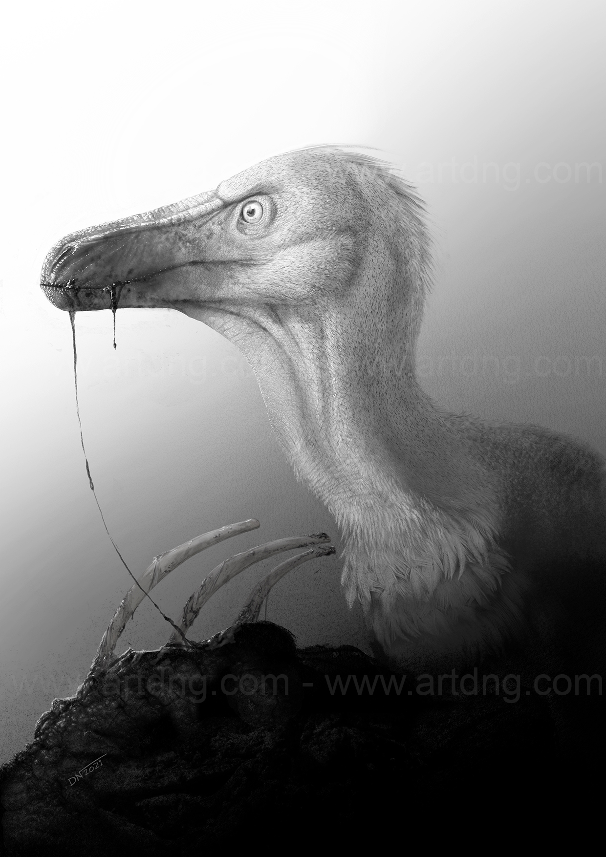 velociraptor_Dani_Navarro_Final_para_web