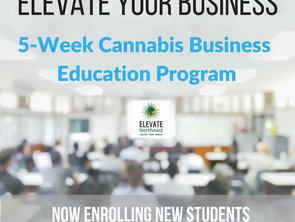 Cannabis Business Education Curriculum Launches in Boston
