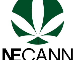 New England Cannabis Network Announces 2018 Convention Dates, adds Managing Director