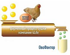 Ovofactor.png