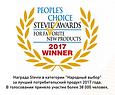 Stevie_award1.png
