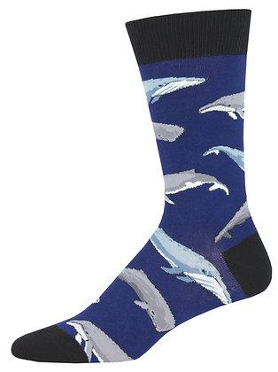 Whale Whale Whale - Navy