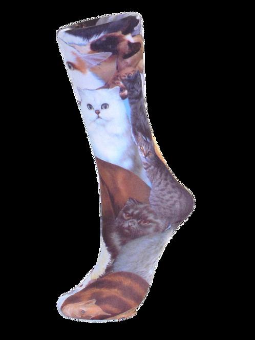 Kitty- Compression Socks