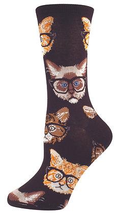 Kittenster - Black & Brown