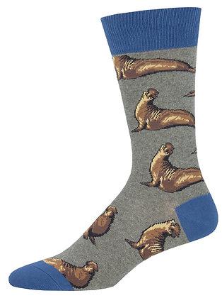 Elephant Seals - Gray Heather