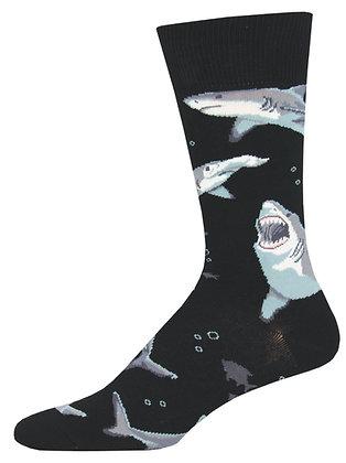 Shark Chums - Black