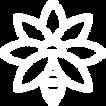 160202-Logo-bianco-Apicultura-Torinese_e
