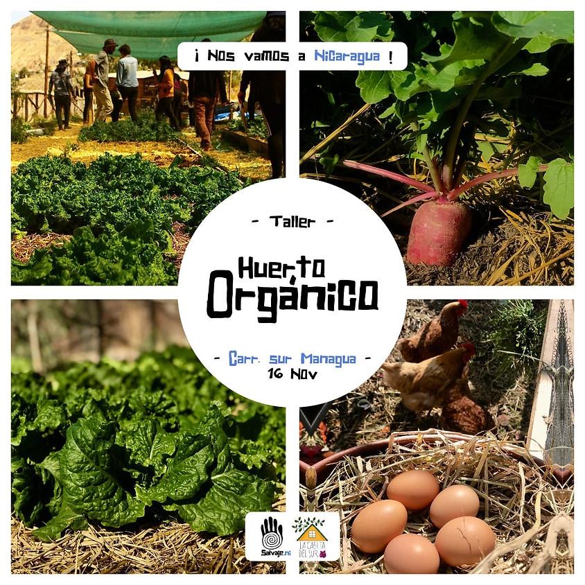 Nicaragua | Taller de Huerto Orgánico