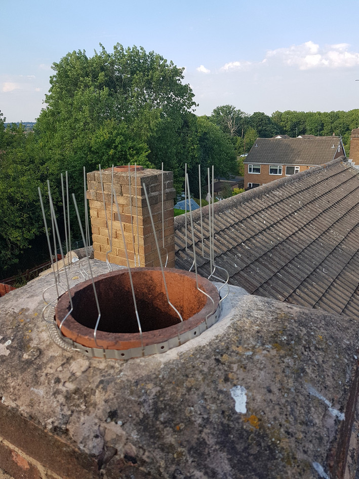 Bird Proofing Coventry