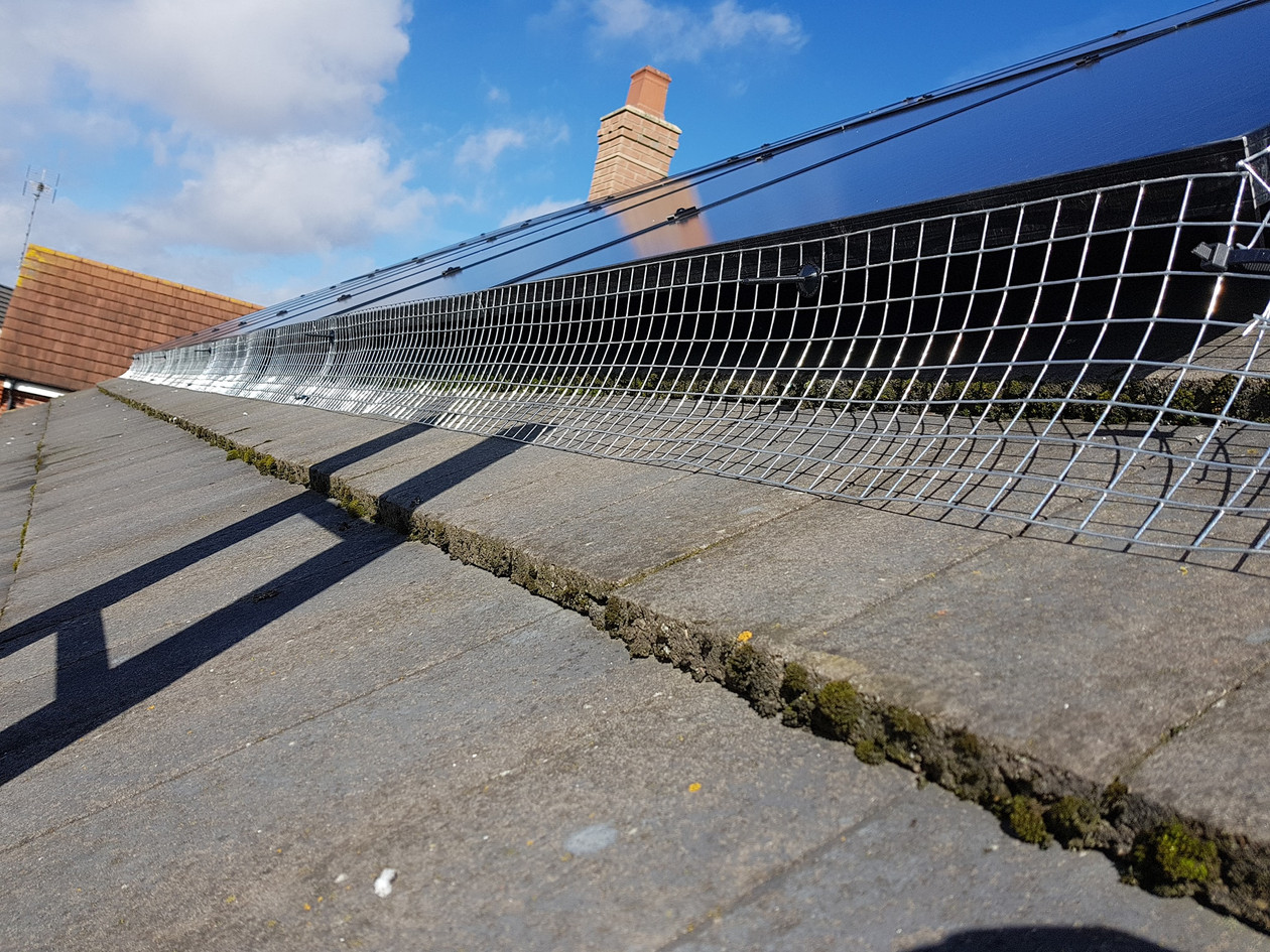 solar panel proofing coventry pest control