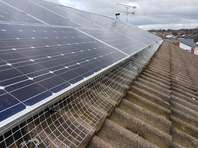 solar panel proofing bird exclusion Coventry