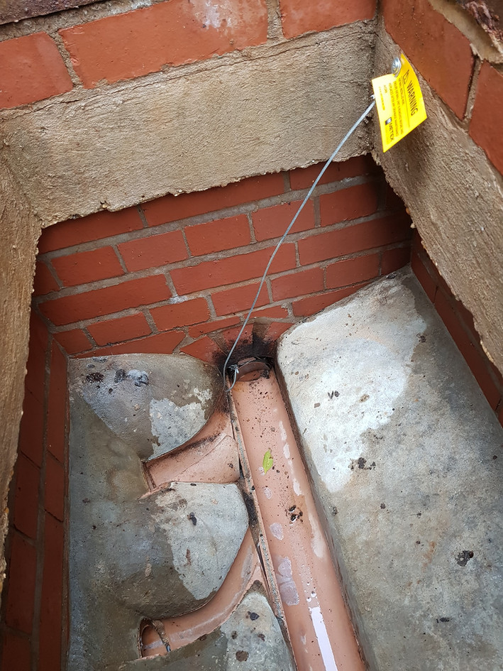 rat rodent control coventry