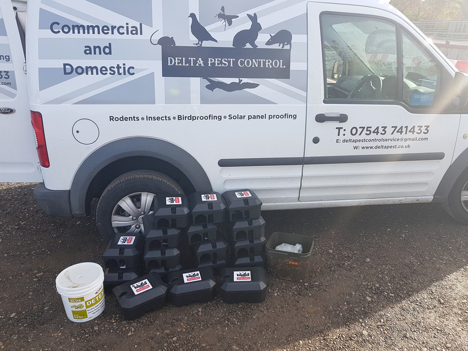 Rats Pest Control Coventry