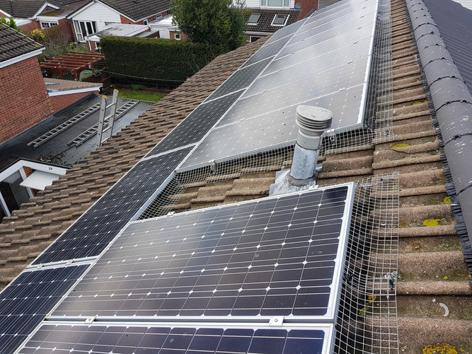 solar panel proofing pigeons birds nesting coventry