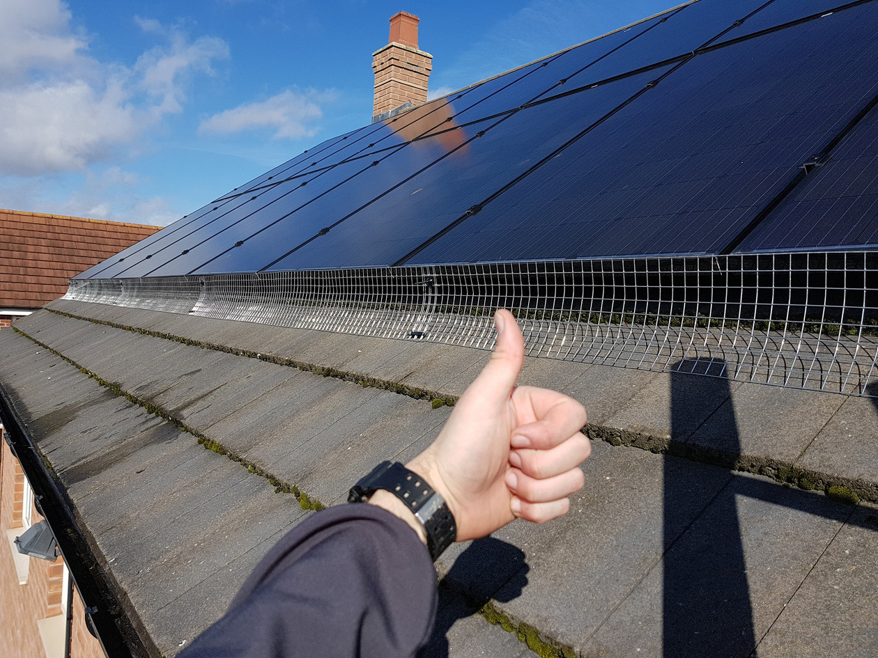 solar panel proofing pigeon birds nesting