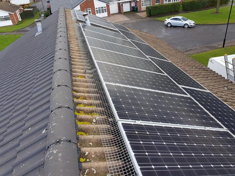 solar panel proofing birds nesting