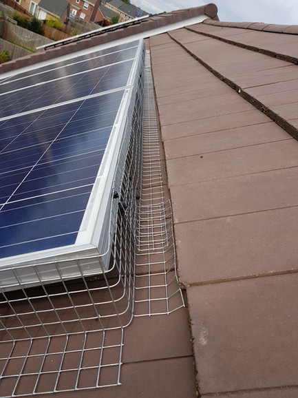 solar panels proofing nesting pigeons under solar panels