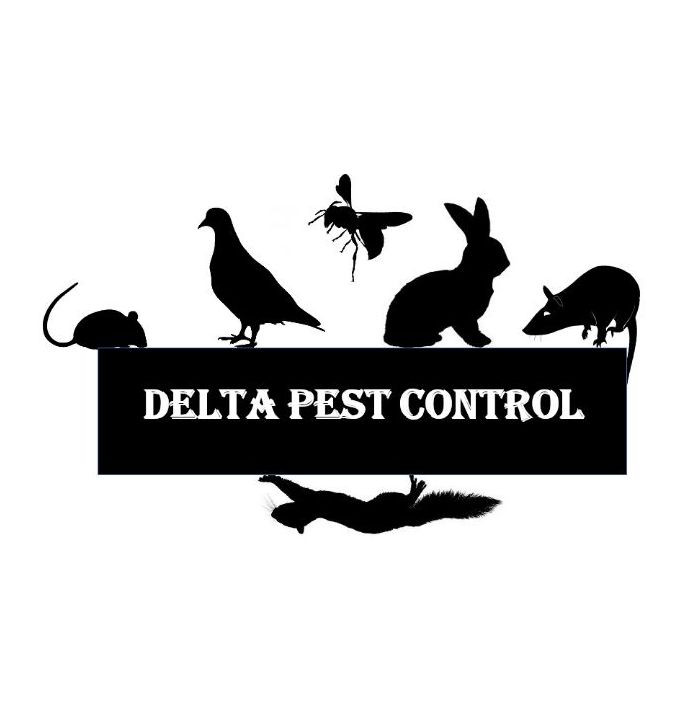 delta pest control coventry