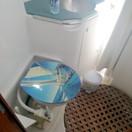 Manual toilet in the Master cabin.jpg