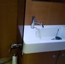 fwd sink.jpg