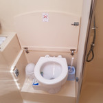 electric wc.jpg