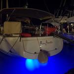under water lamps.jpg