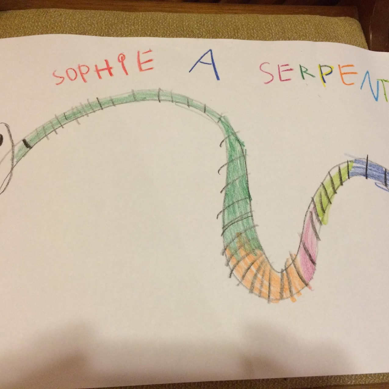 Serpente desenho