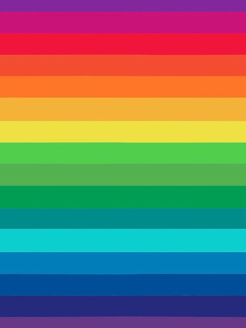 Rainbow fun stripes (cotton lycra)