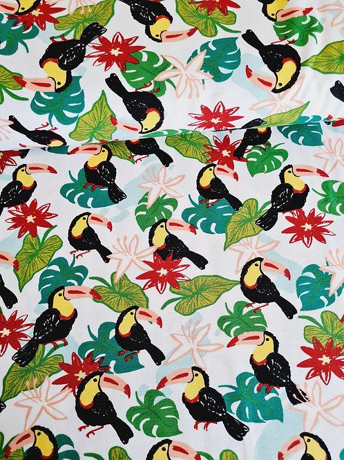 Happy tropical toucans
