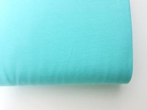 Mint plain jersey