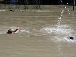 Nadando en el Arroyo