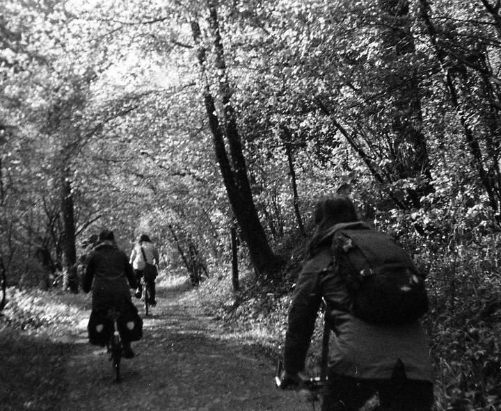 En forêt de Grimboscq